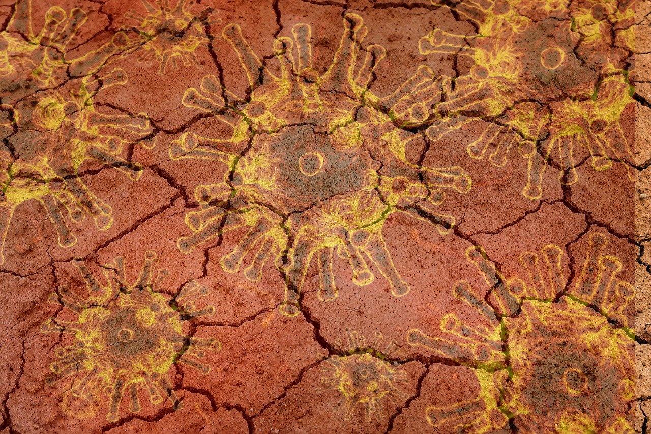 Die Überblendung von Corona Viren und einem ausgetrockneten Boden assoziieren die Themen des Beitrags